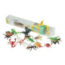 Maailman hyönteiset