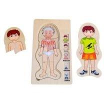 Lapsen anatomia - Poika