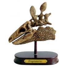 Arkkeologisetti - Stegosaurus
