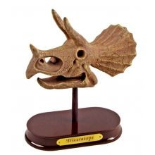 Arkkeologisetti - Triceratops